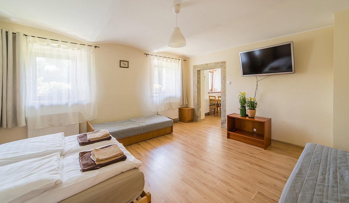 noclegi-gory-sowie-apartament-wielka-sowa