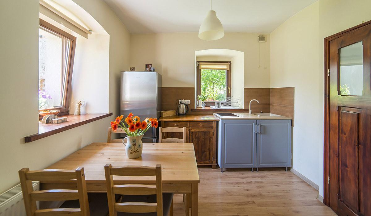 noclegi-gory-sowie-apartament-wielka-sowa-kuchnia